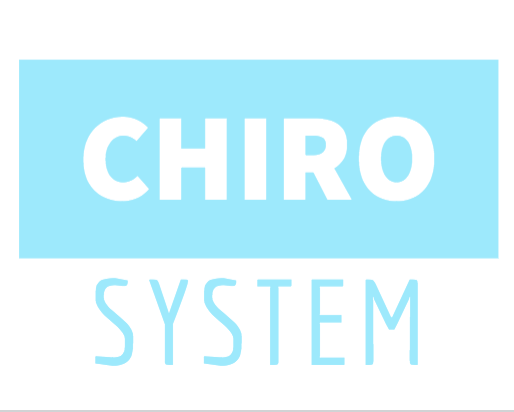 Chiropractic System